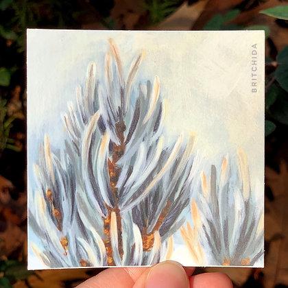 Sticker: Winter Twig 7