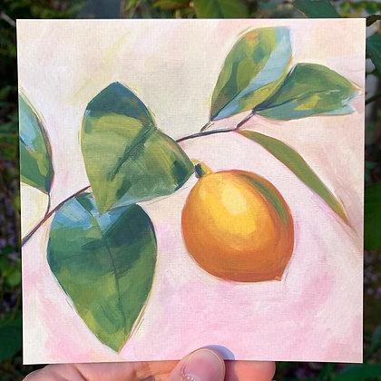 Print: Lemon 1