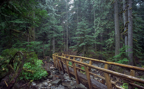 The Trail to Deception Falls