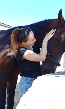 körperarbeit-pferd-1.jpg