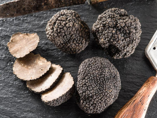 El diamante de la gastronomía: la trufa negra