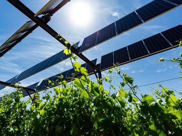 Signature d'une charte entre la FNSEA, les Chambres d'Agriculture et EDF