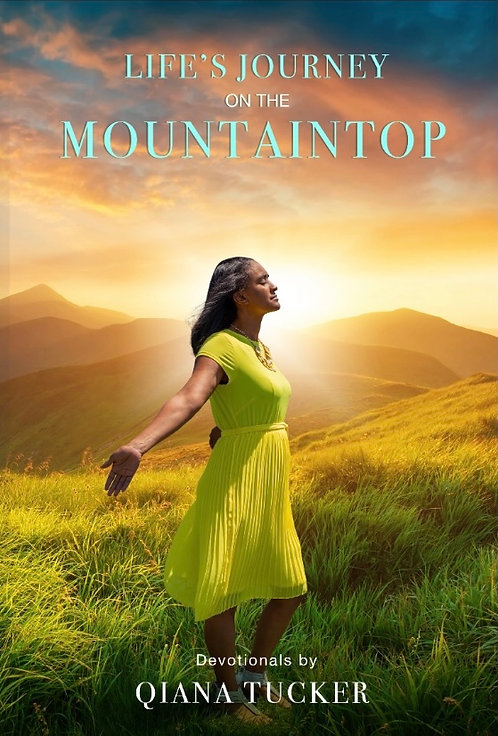 Life's Journey:  On the Mountaintop