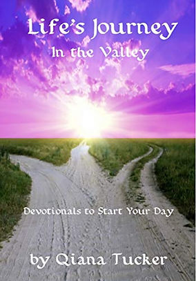 Lifes Journey In the Valley Front Cover.