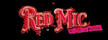 the big d zoom logo long button logo spr