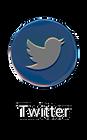 Twitter Holo Logo