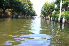 Provide Relief After Severe Flooding in Thailand