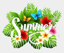 1-11887_summer-clipart-summer.png
