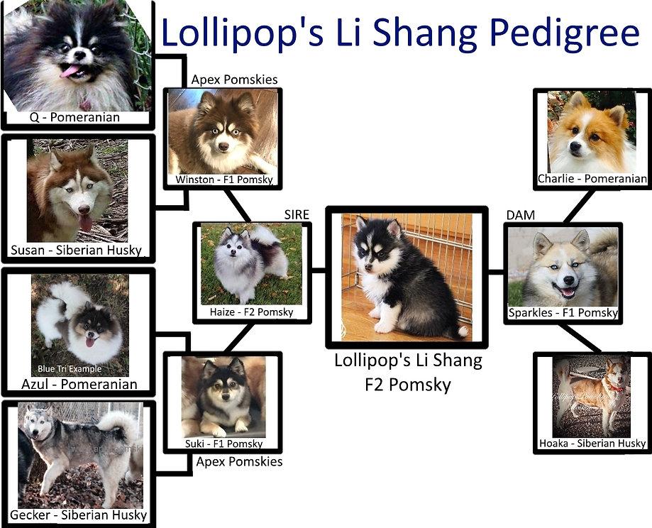 LiShangPed.jpg