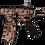 SKIN ARP556 STICKER