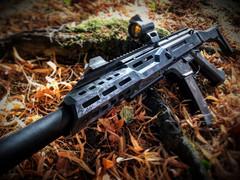 Installation Skin Scorpion Evo BET/Carabine