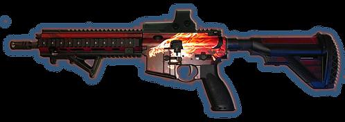 HK416 HOWL