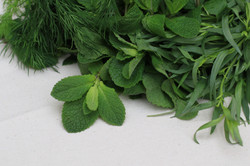 Fresh herbs for every dish