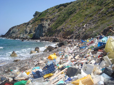 India's Oceanic Pollution is Catching Up with its Citizens
