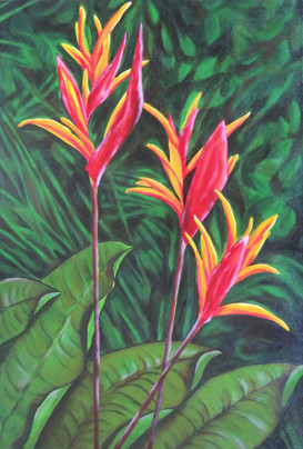 """#3 of""""Tropical Trio"""" (Heliconias varieties--Gingers)"""