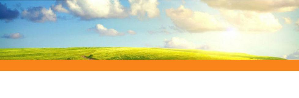 fondomaqueta-web.jpg