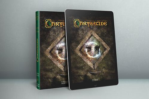 Chrysalide, 2-La Passerelle des trois Mondes