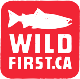 wildfirst-logo.png