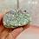 Thumbnail: Amethyst Aura Cluster C33