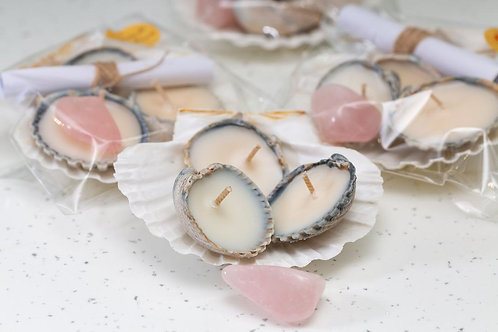 The Sea-Shell Trio with Rose Quartz