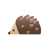 Veterinary Care for Hedgehogs