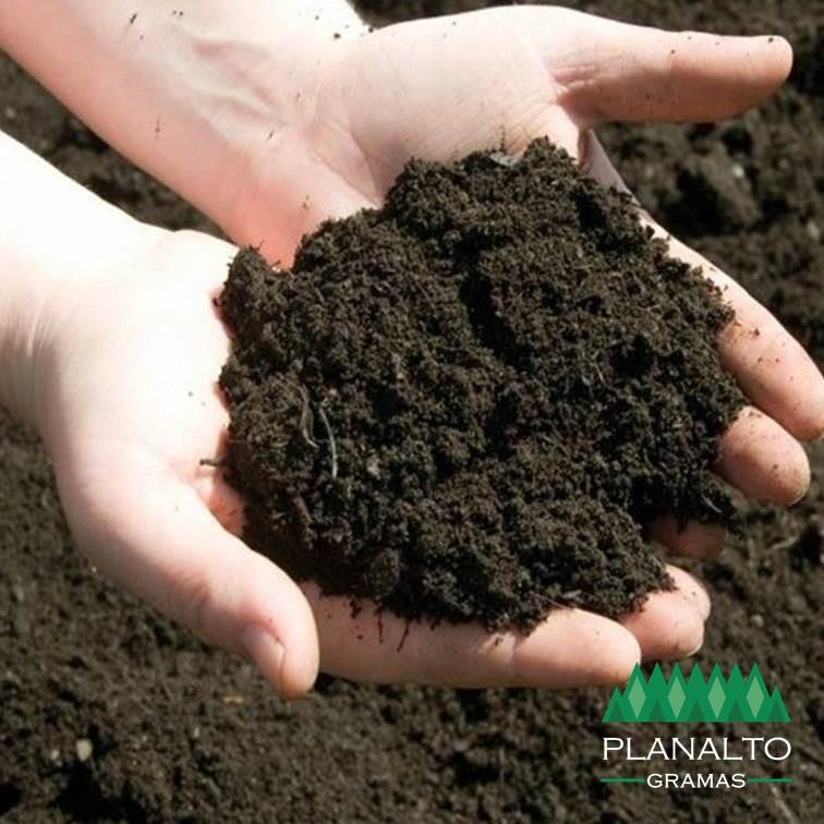 Terra para grama - planalto gramas