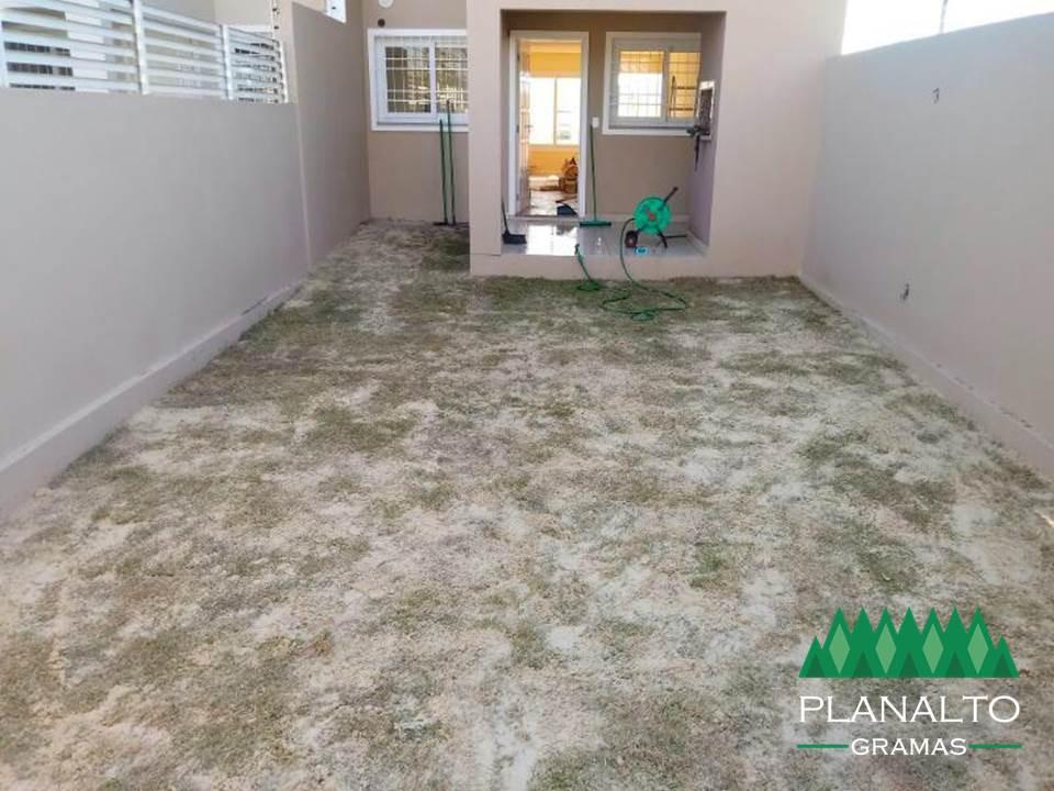 Cobertura de areia - Planalto Gramas