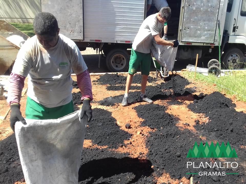 Composto especial para grama - Planalto Gramas
