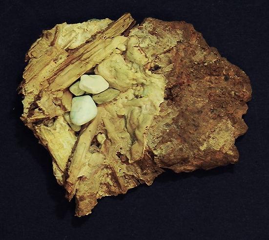 "Aragonite ""Bird's nest,"" with splinters of mine timber"