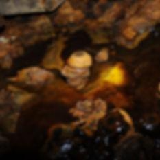 Acidic mine water with stalagmite