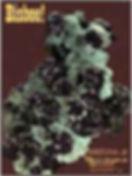 """Mineralogical Record Magazine """"Bisbee, Arizona - Arizona III"""