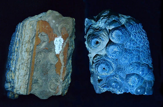 post-mining aragonite and calcite mixture