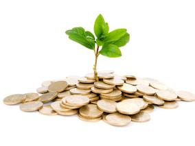 Как получить кредит на развитие при недостаточном обеспечении