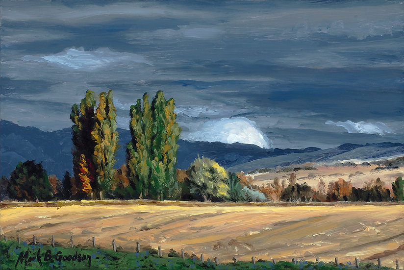 Poplars Before the Storm