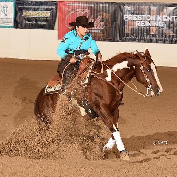 Foal, Riskey