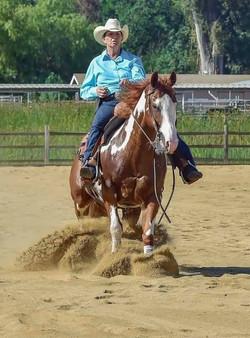 Foal, Big Money