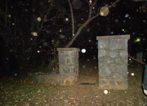 The Founder's Cemetery Orbs