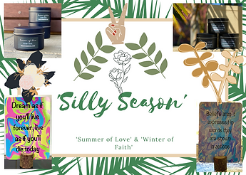 'Silly Season'-2.png