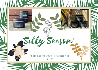 'Silly Season'.png