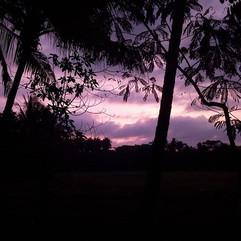 #java Sunset lights no filter needed.jpg