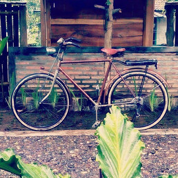 Rusty bike, perfect for surfing checks #