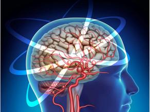 Confira a 2º Edição da Revista NeuroEmSinopse