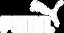 Puma Logo.webp