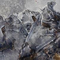 Autumn ice 8