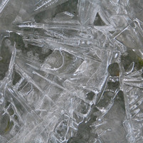 Winter ice 4