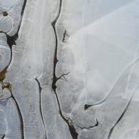 Ice on puddle 1