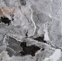 Ice on puddle