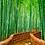 Thumbnail: TallGreen Bamboo