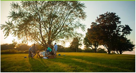 summer field picnic pic Screen Shot 2019
