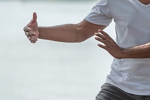 puchase pic tai chi shutterstock_1120148